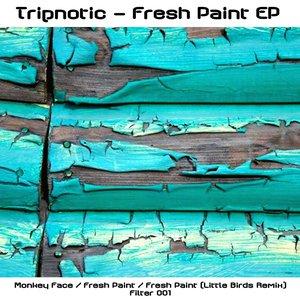 Imagen de 'Fresh Paint (Little Birds RMX)'