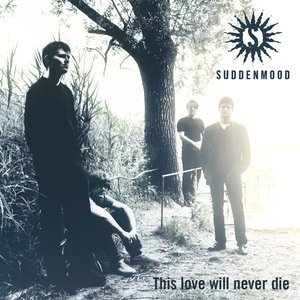 Image for 'This Love Will Never Die'
