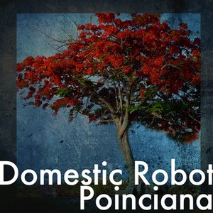 Image for 'Poinciana'