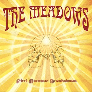 Image for 'First Nervous Breakdown'