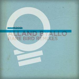 Image for 'Rare Bird Remixes'