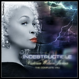Image for 'Indestructible'