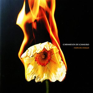 Image for 'Flor de Fuego'