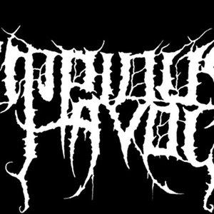 Bild für 'Impious Havoc'