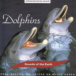 Image for 'Dolphins: Above The Waves'