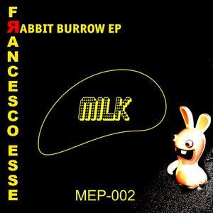 Image for 'Rabbit Burrow - EP'