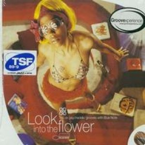 Image for 'Look into the Flower'