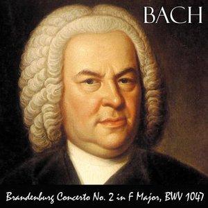 Image for 'Johann Sebastian Bach Orchestra'