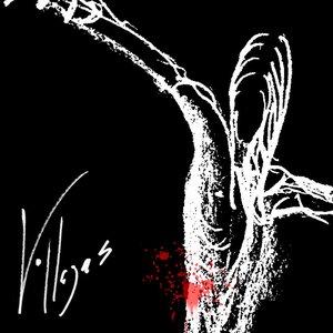 Immagine per 'VILLEGAS'
