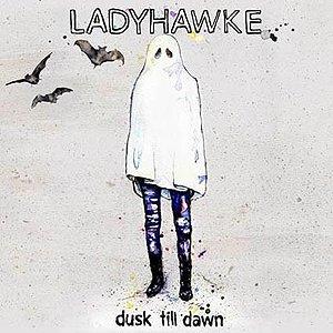 Imagem de 'Dusk Till Dawn (Radio Edit)'