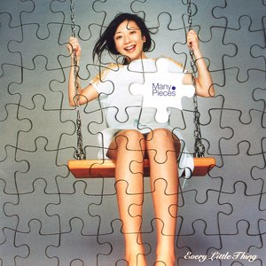 Immagine per 'Many Pieces'