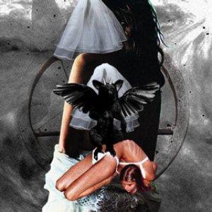 Bild für 'From Darkness'