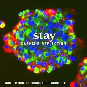 Image for 'Kashmir Reflection'