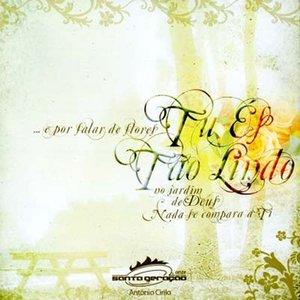 Image for 'Tu És Tão Lindo'