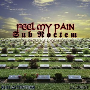 Image for 'Feel My Pain (For Diana)'