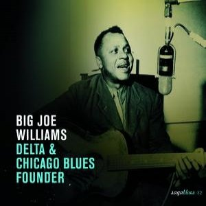Image for 'Delta & Chicago Blues Founder'