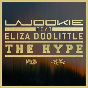 Image for 'The Hype'