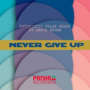 Image for 'Never Give Up (feat. Angie Brown)'