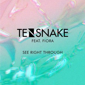 Image for 'See Right Through'
