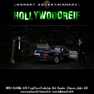 Image for 'Hollywoodreif LP'