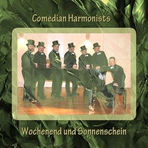 Image for 'Wochenend und Sonnenschein'