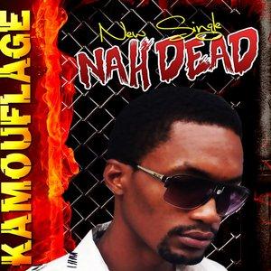 Bild für 'Nah Dead - Single'
