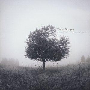 Image for 'Sua (feat. Toninho Ferragutti)'