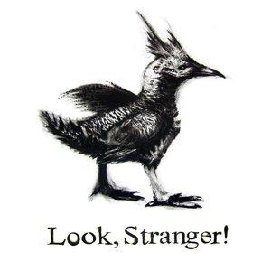 Image for 'Look, Stranger!'