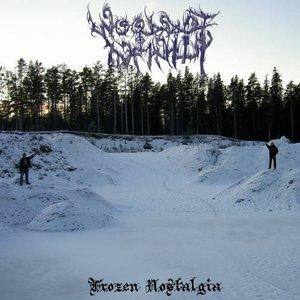 Image for 'Frozen Nostalgia'