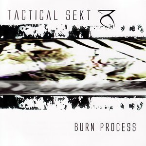 Image for 'Burn Process'