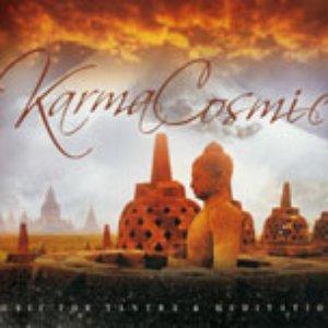 Image pour 'Karmacosmic'