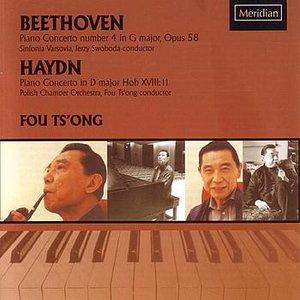 Image for 'Piano Concerto in D Major Hob XVIII: 11: Vivace'