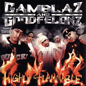 Image for 'Highly Flammable'