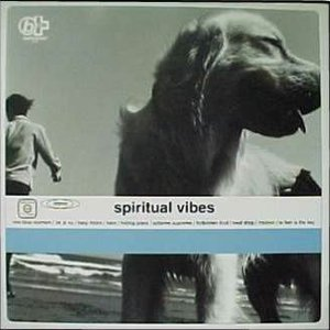 Image for 'Spiritual Vibes'