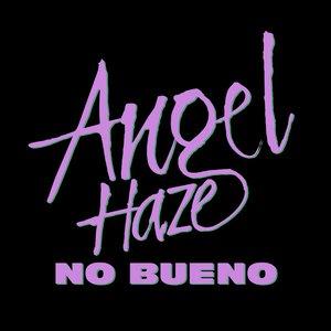 Image for 'No Bueno'