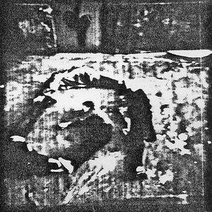 Image for 'Didaktische Einheit'