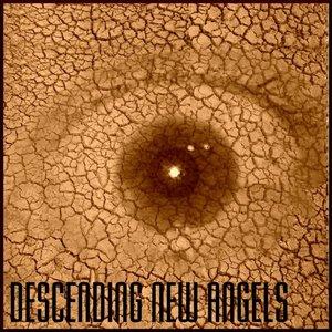 Image for 'Descending New Angels'
