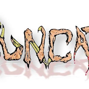 Image for 'Truncator'