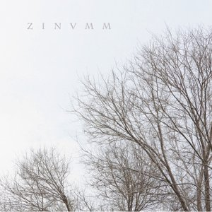 Image for 'ZINVMM'