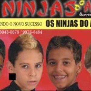 Bild för 'Ninjas do Arrocha'
