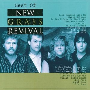 Image for 'Best Of New Grass Revival'