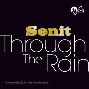 Image for 'Through the Rain'