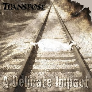 Image for 'A Delicate Impact'