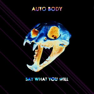 Image for 'Say What You Will'