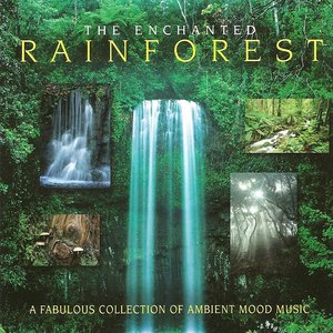 Image for 'The Enchanted Rainforest'