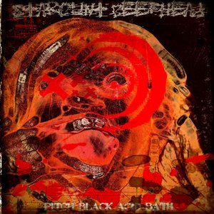 Image for 'Starcunt Beefhead - Pitch Black Acid Bath EP'