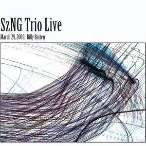 Image for 'SzNG Trio Live 3/29/2009'