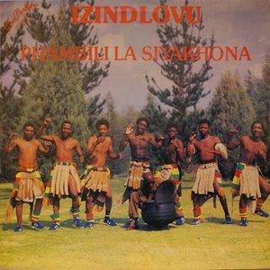 Bild för 'Izindlovu'