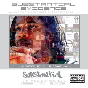 Image pour 'Substantial Evidence'