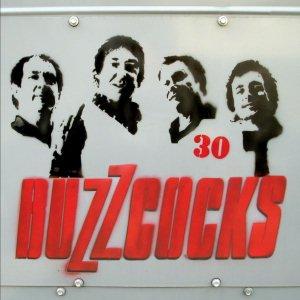 Immagine per 'Buzzcocks:30'